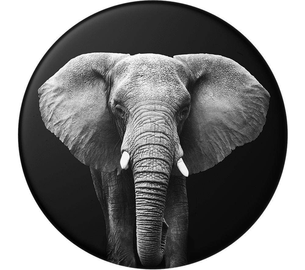 Image of POPSOCKETS Swappable PopTop Loxodonta Africana Phone Grip - Elephant