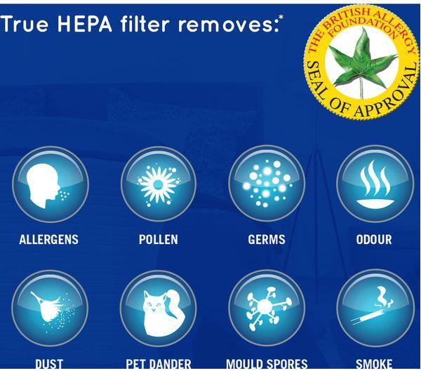 air purifier business plan