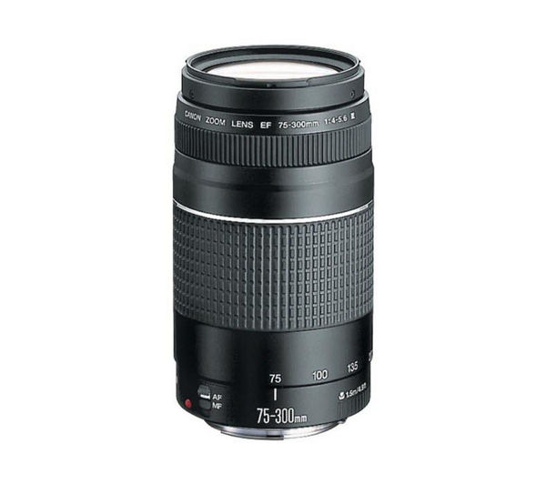 Compare cheap offers & prices of Canon EF 75-300 mm f-4.0-5.6 III USM Telephoto Zoom Lens manufactured by Canon